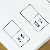 detail from photo of Referendum Ballot Paper, by Mark Stedman/Photocall Ireland, via thejournal.ie