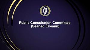 Public Consultation Committee Seanad Eireann